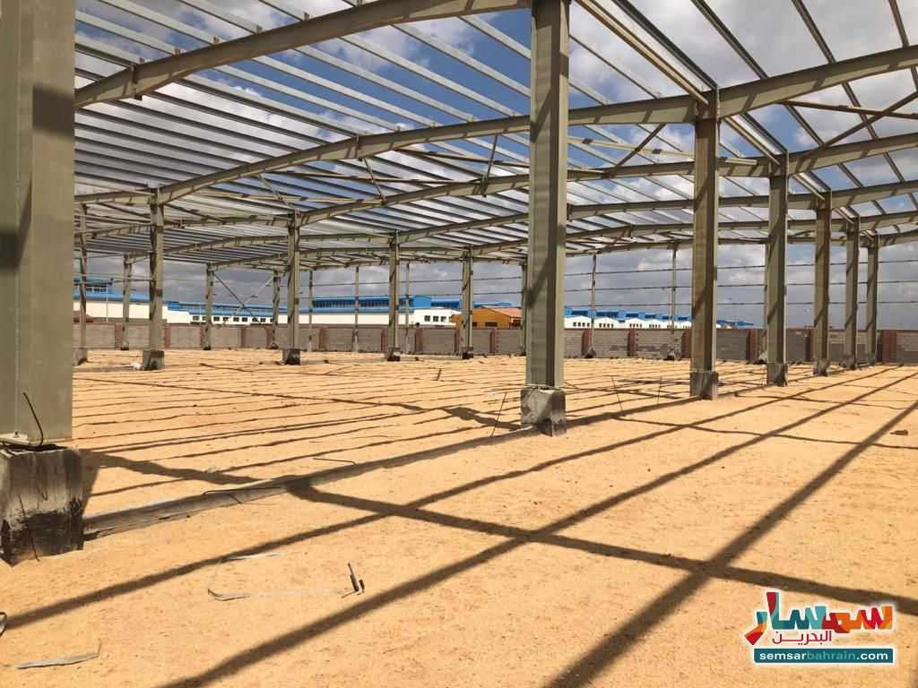 Ad Photo: All 14500 sqm in Egypt