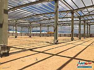 Ad Photo: All 14500 sqm in Sadat  Minufiyah